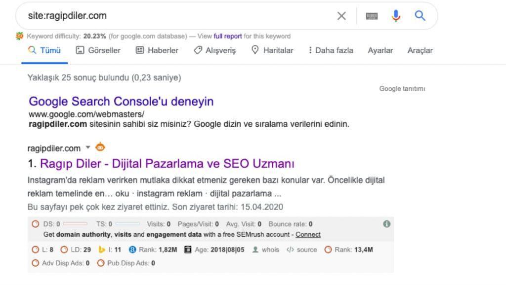 google url kaldırma, Seotional
